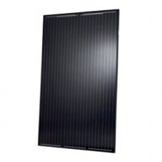 295W Q Cells Peak G4 all black mono panel